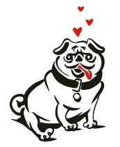 massage canin grenoble